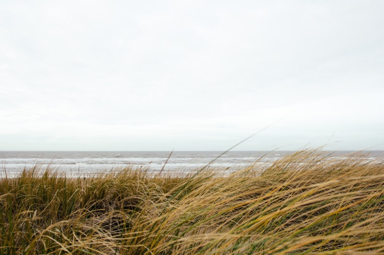 Beach view by Alex Talmon